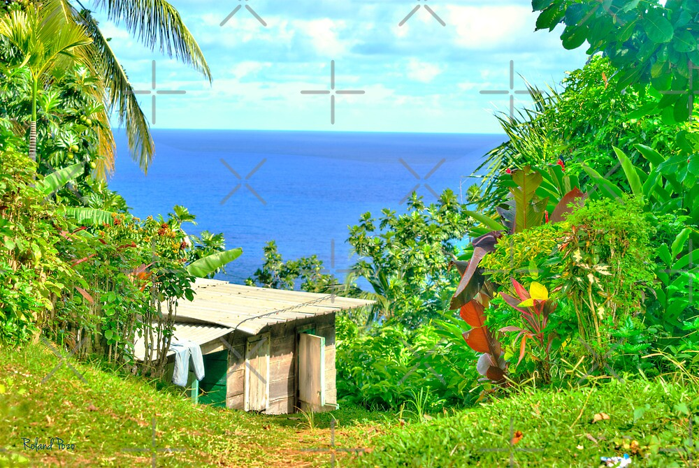 Shack with a View by photorolandi