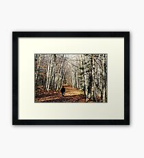 Lovely fall walk Framed Print