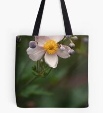 A great teacher surrounded by emerging talent Tote Bag