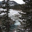 Winter falls  by Coleen Gudbranson