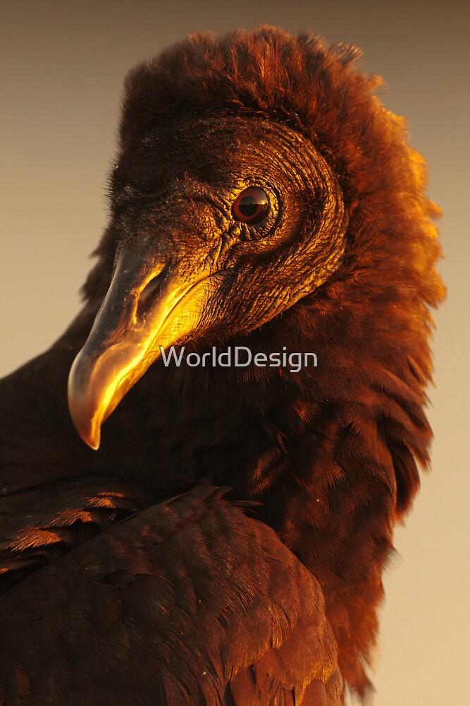 Golden Vulture by WorldDesign
