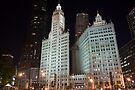 Chicago's Wrigley Building at Night by eegibson