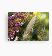 Buddleja and Web Canvas Print