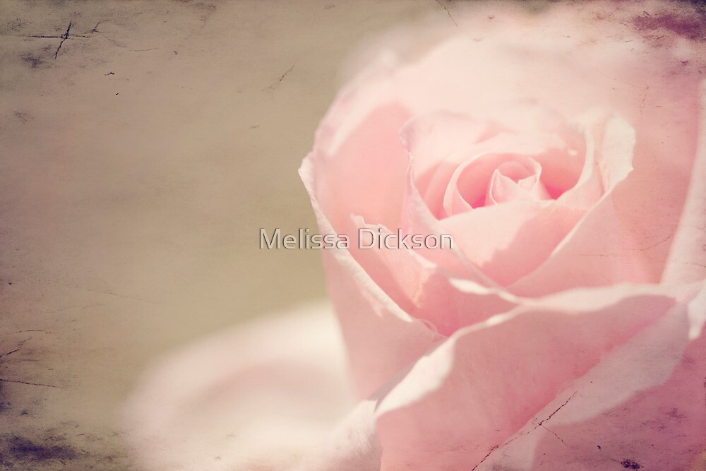 Open to love... by Melissa Dickson