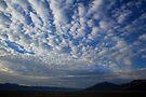 Buttermilk Sky by Arla M. Ruggles