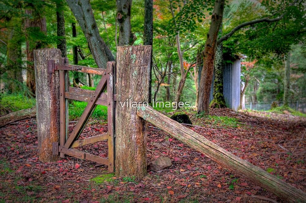 Gate. by vilaro Images