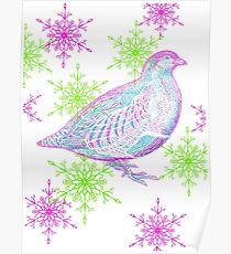 Partridge  Poster