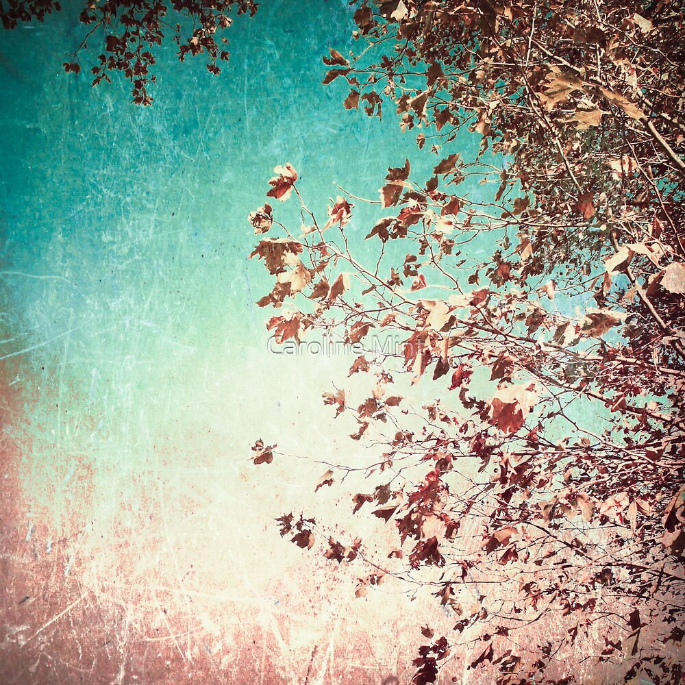 Pink autumn leafs on blue textured background by Caroline Mint