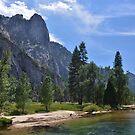 Yosemite Sunshine, California, America by Shona McMillan