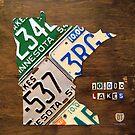 Minnesota License Plate Map Artwork by designturnpike