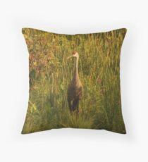 Sandhill Crane Standing on Shoreline Throw Pillow