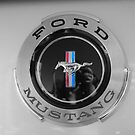 Ford Mustang by MissyD