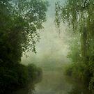 Six Mile Creek 2 by JKKimball