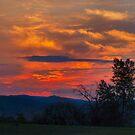 Firey Sky by Barb Miller