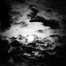Sunrise in Black & White by iquraishi