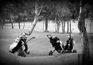 Golf Carts by Chris Goodwin