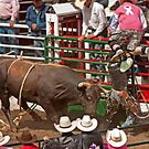 Bull Riding by BCkat