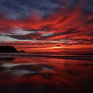 Sunrise Avoca Beach, NSW, Australia by Of Land & Ocean - Samantha Goode