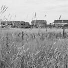 Flax Mill by trishringe
