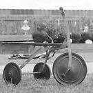 Trike by trishringe
