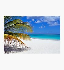 Caribbean beach. Photographic Print