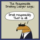 The Responsible Drinking Lawyer by firstdog