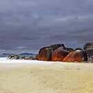 Red Lichen at Wilson's Promontory by Janette Rodgers