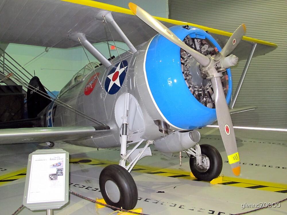 F3F-2 Biplane - Polk City, FL, U.S.A. by glennc70000