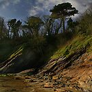 Carhayes Beach by AndyReeve
