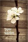 Happy Birthday Blossoms by Vanessa Barklay