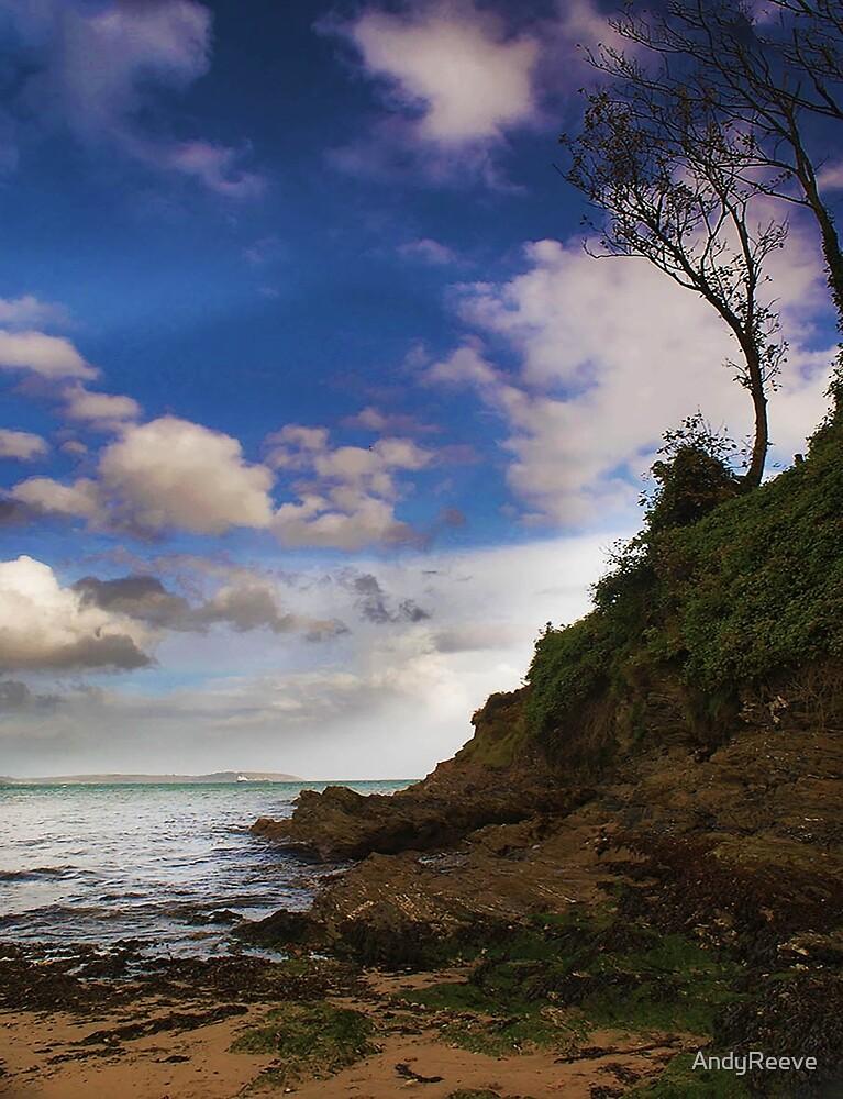 MAENPORTH BEACH by AndyReeve