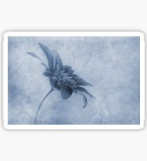 Faded beauty cyanotype Sticker