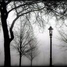 What lurks in the fog... © by Dawn Becker