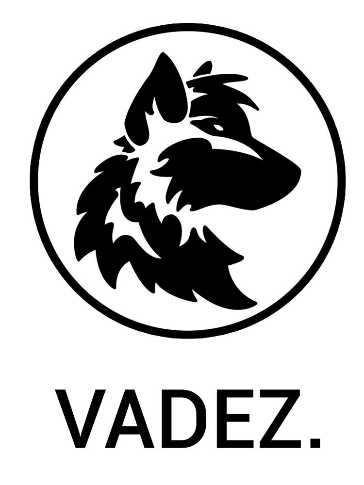 Logotipo simple de xVad3r