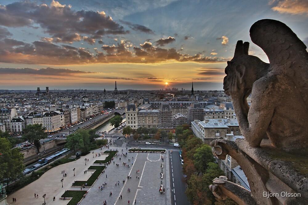 Notre Dame by Bjorn Olsson