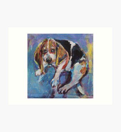 Bashful beagle Art Print