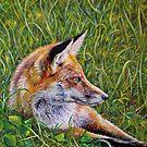 Lazy Day Fox by whiterabbitart