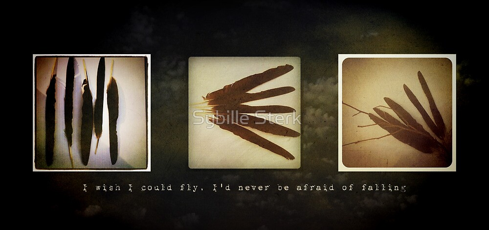 I wish I could fly, I'd never be afraid of falling by Sybille Sterk