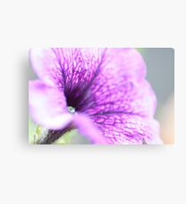 Natures Flower Canvas Print
