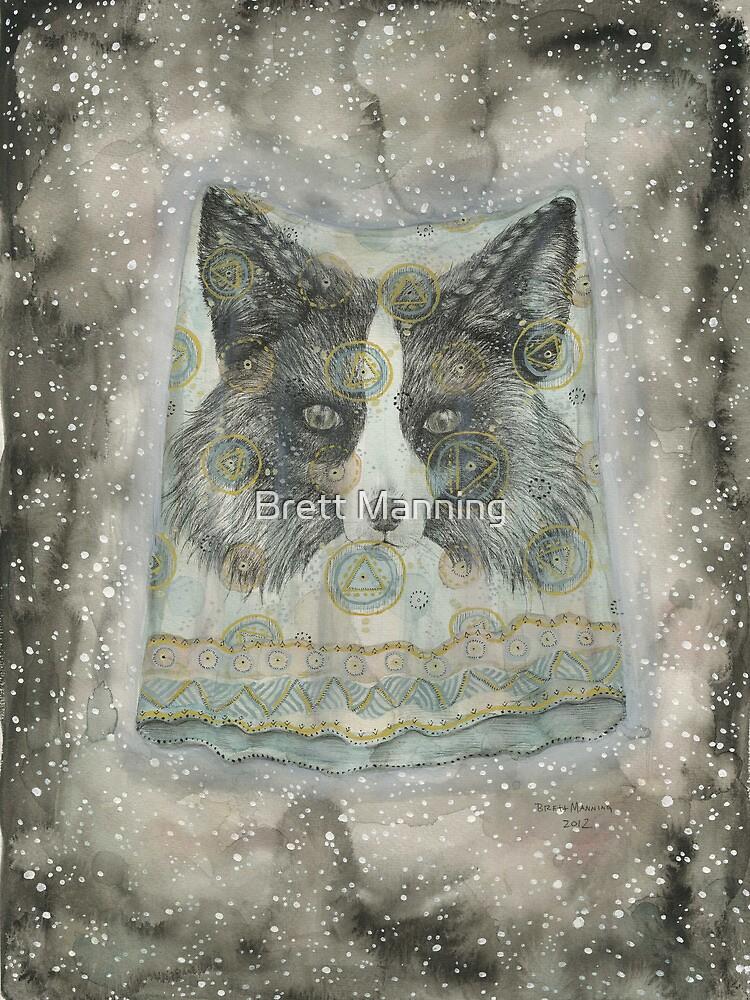 Silver Fox by Brett Manning