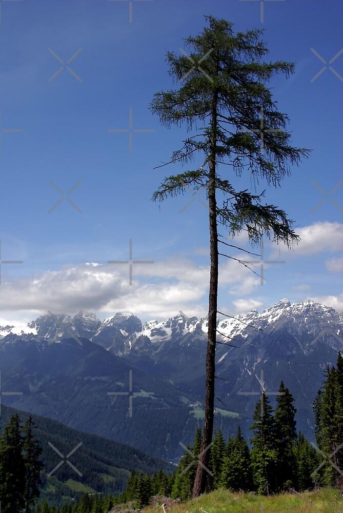 Overlooking Stubaier Alps  by AnnieSnel