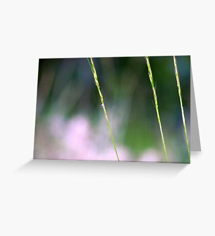 Simply Simple~ Greeting Card