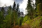 View  Mountain  Ilm Spitze  by AnnieSnel