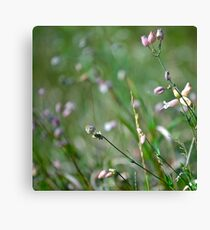 regular plant Canvas Print