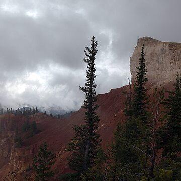 Bryce Canyon by JudsonJoyce