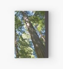 Reach for the Sky Hardcover Journal