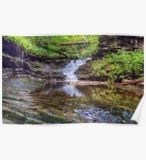Waterfall Reflected Poster