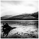 Loch Long - Scotland (2) by Rory Garforth