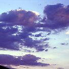 evening sunset-aug.2012 by califpoppy1621