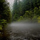Fog On The Water by Charles & Patricia   Harkins ~ Picture Oregon